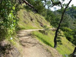 Trails - South Yuba River State Park: Bridgeport<meta name